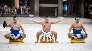 Hakuho,troisièmeyokozunad'origine étrangère à être naturalisé au Japon, le 6 janvier 2017. (BEHROUZ MEHRI / AFP)