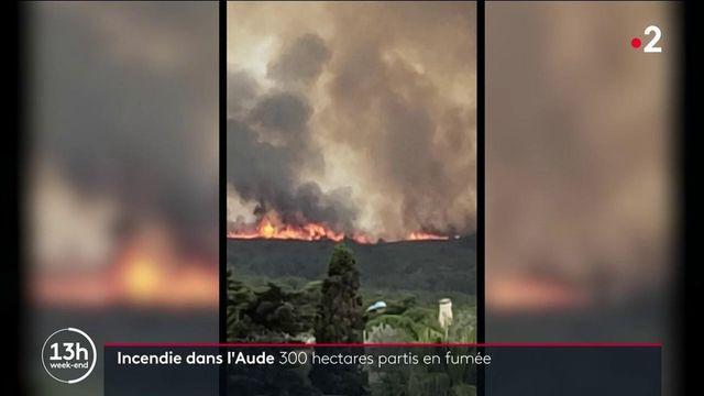 Incendie de l'Aude : 300 hectares sont partis en fumée