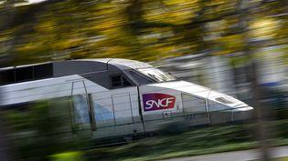 Un TGV de la SNCF à Nantes (Loire-Atlantique), le 8 novembre 2017. (LOIC VENANCE / AFP)