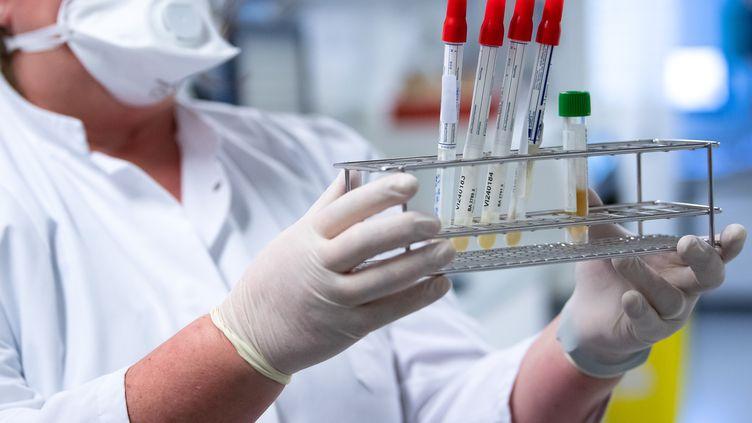 Une employée de l'institut de virologie de Munich (TUM) prépare des échantillons pour des analyses,le 23 mars 2020. (SVEN HOPPE / DPA / AFP)