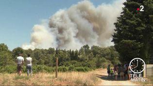 Des incendies ravageant des terres dans les Pyrénées-Orientales. (France 2)