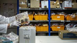 Des sacs contenant des stupéfiants placés sous scellés à l'Institut national de la police scientifique, le 19 juin 2014. (JEFF PACHOUD / AFP)
