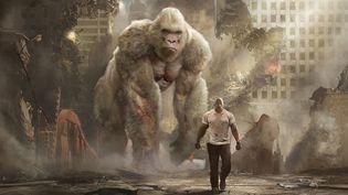 "Dwayne Johnson dans ""Rampage - Hors de controle"" de Brad Peyton  (Warner Bros. Entertainment Inc. All Rights Reserved)"
