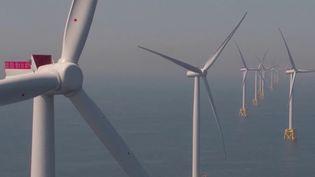 Côtes-d'Armor : les pêcheurs s'opposent à la construction d'un parc éolien en mer (France 3)
