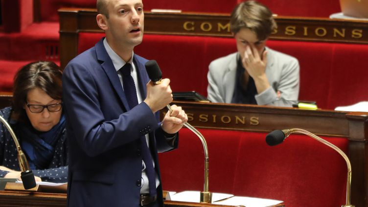 Le député LREM Stanislas Guérini lors d'une séance de questions au gouvernement à l'Assemblée nationale, le 24 janvier 2018. (JACQUES DEMARTHON / AFP)
