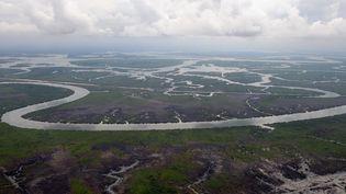Vue aérienne du fleuve Niger, au Nigéria, le 14 avril 2009. (PIUS UTOMI EKPEI / AFP)
