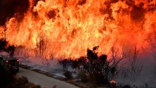 Les pompiers tentent de venir à bout d'un incendie au nord de Los Angeles (Etats-Unis), le 9 décembre 2017. (GENE BLEVINS / REUTERS)