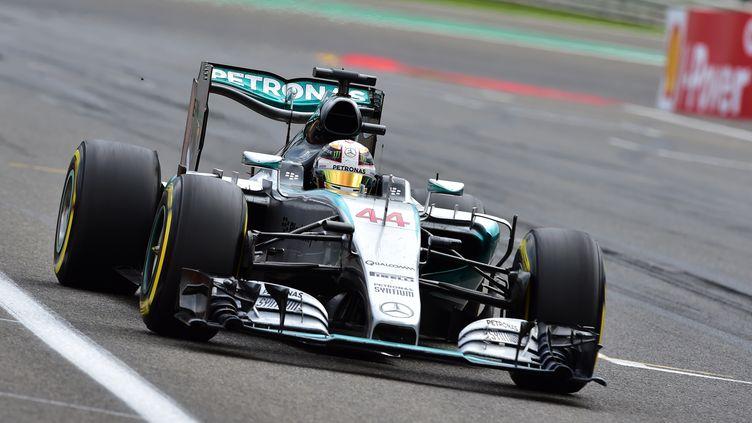 Le pilote britannique Lewis Hamilton triomphe en Belgique (ANDREJ ISAKOVIC / POOL)