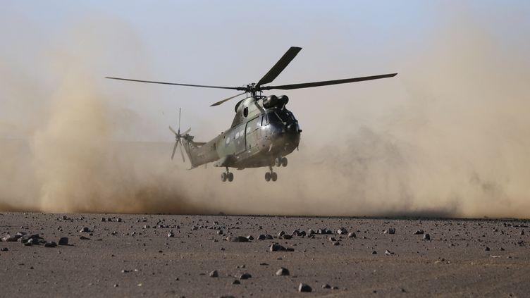 Un hélicopète Puma atterrit près de Tessalit, dans le nord du Mali, le 14 mars 2013. (KENZO TRIBOUILLARD / AFP)