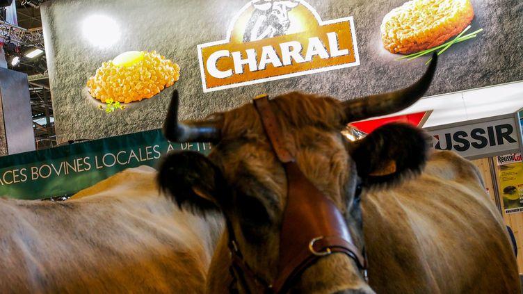 Le logo des viandes Charal au Salon de l'agriculture, le 23 février 2015. (MAXPPP)