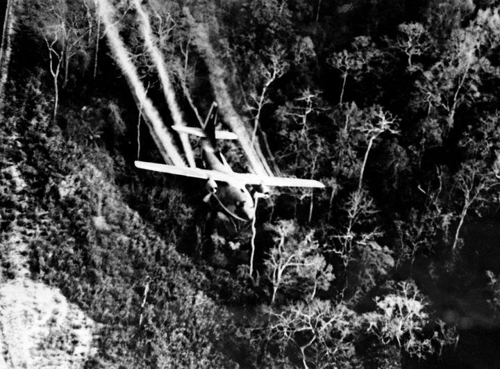 """Un avion de l'armée américaine arrose une forêt vietnamienne d'un herbicide puissant, l'""""agent orange"""", le 3 mars 1967. (AFP / UPI)"""
