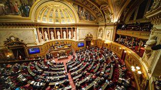 Le Sénat pendant une séance, le 5 février 2020, à Paris. (DANIEL PIER / AFP)