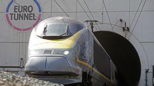 Un Eurostar sort du tunnel sous la Manche à Calais (Pas-de-Calais), le 24 juin 2015. (CHRISTIAN HARTMANN / REUTERS)
