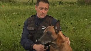 Eros, un chien de la police nationale d'Angers (Maine-et-Loire), en fonction depuis 2011,a été récompensé avec son maître pour son héroïsme. (CAPTURE D'ÉCRAN FRANCE 3)