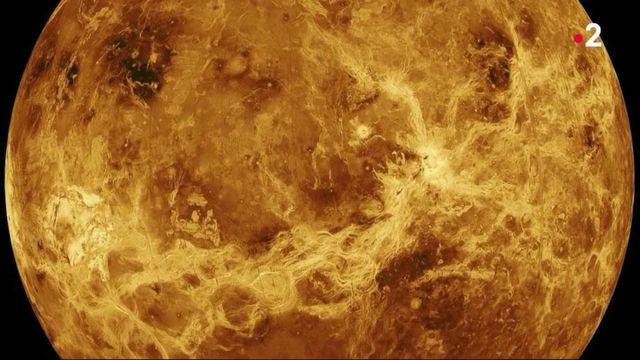 Trace de vie sur Venus : une découverte capitale