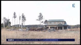 La région de Fukushima a été abandonnée. (FRANCE 3)
