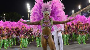 L'école Mangueira défile dans le sambodrome de Rio, dans la nuit du 2 au 3 mars 2014  (Yasuyoshi Chiba / AFP)