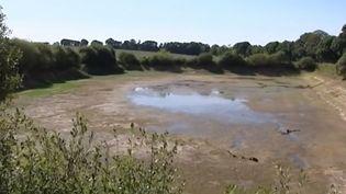 L'Aquitaine est la région la plus touchée par la sécheresse. La situation est également critique en Bretagne et le centre. Les agriculteurs redoutent un été équivalent à celui de 1976 car les nappes phréatiques sont déjà au plus bas. (France 3)