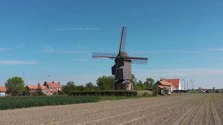 Patrimoine : le moulin, l'emblème de la Flandre française. (FRANCE 2)
