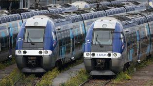 """La SNCF attend """"un impact quasi nul"""" sur le trafic ferroviaire, avec seulement """"des perturbations mineures en Midi-Pyrénées, en Occitanie et en Aquitaine"""". (CHARLY TRIBALLEAU / AFP)"""
