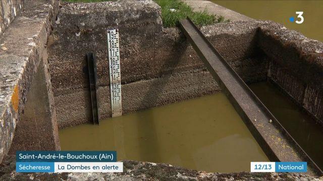 Ain : la Dombes placée en alerte sécheresse