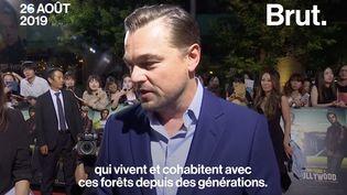 """VIDEO. Amazonie : """"Nous avons le devoir de protéger cet environnement vital"""", a déclaré Leonardo DiCaprio (BRUT)"""