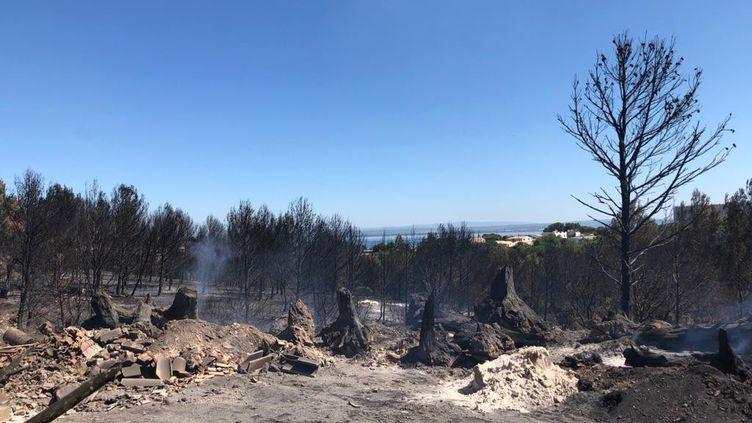 Martigues et ses environs dévastés par des feux de forêts, le 6 août 2020. (NOEMIE BONNIN / RADIOFRANCE)