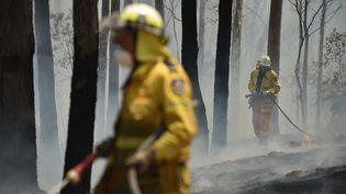 Des pompiers en Australie luttent contre les flammes. (PETER PARKS / AFP)
