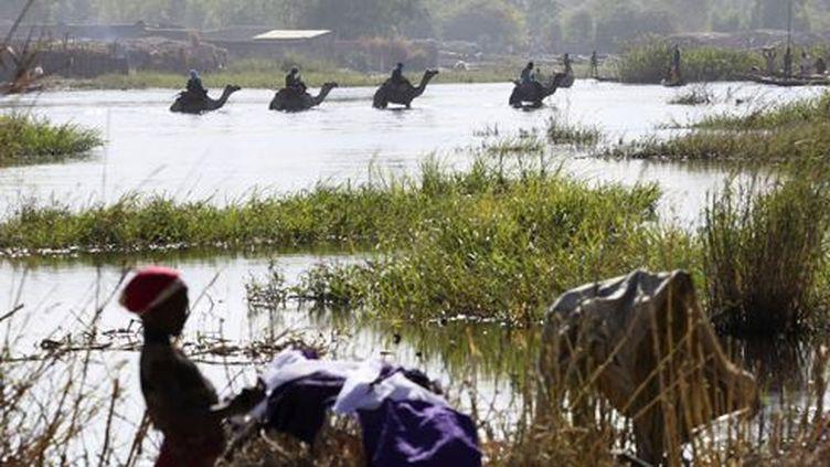 Ngouboua (Tchad), le 19 janvier 2015. Chameaux traversant le lac Tchad (Reuters/Emmanuel Braun)