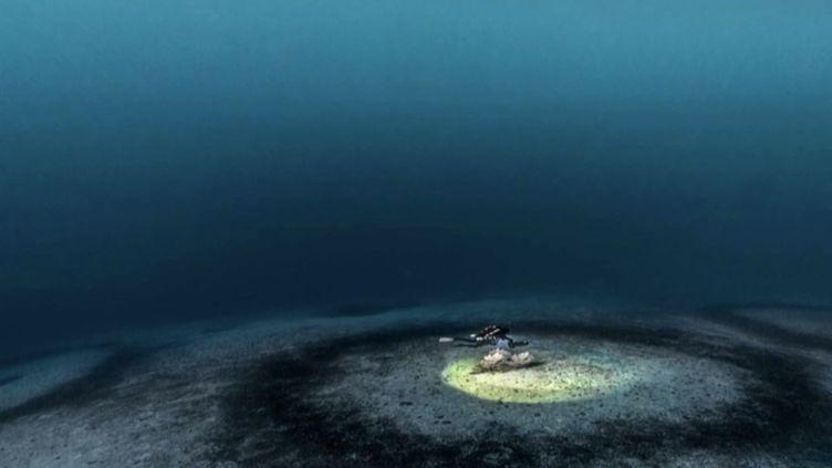 Corse : le mystère des cercles sous-marins. (FRANCE 3)
