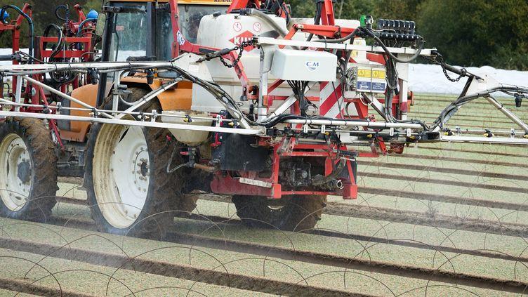Un maraicher pulverise un produit phytosanitaire sur son exploitation (photo d'illustration). (FRANCK DUBRAY / MAXPPP)