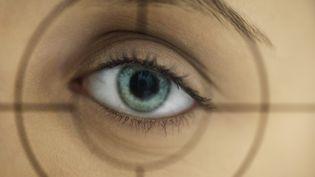"""La carte d'identité biométrique prévue par la proposition de loi sur """"la protection de l'identité"""", doit permettre d'enregistrer les empreintes digitales et la couleur des yeux. (ALE VENTURA / AFP)"""