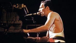 Freddie Mercury, chanteur de Queen, lors d'un concert à Bercy en 1984. (JEAN-CLAUDE COUTAUSSE / AFP)