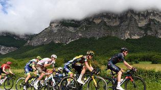 Les coureurs sur les routes du Critérium du Dauphiné, samedi 5 juin 2021. (ALAIN JOCARD / AFP)