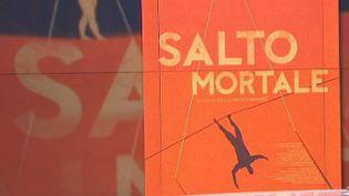 Salto Mortale (CAPTURE D'ECRAN)