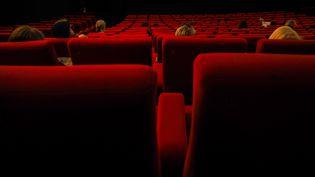 Un cinéma Gaumont à Paris (12 mai 2018) (RICCARDO MILANI / HANS LUCAS / AFP)