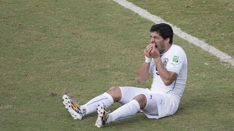 Luis Suarez se tient les dents après avoir mordu l'épaule de Giorgio Chiellini, mardi 24 juin lors du match Uruguay-Italie, à l'Arena Das Dunas de Natal (Brésil). (OMAR MARTINEZ / MEXSPORT / AFP)