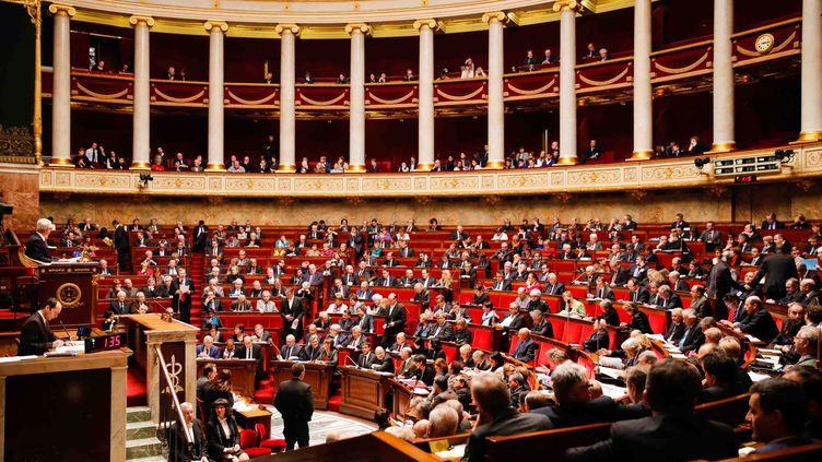 L'hémicycle de l'Assemblée nationale, à Paris, le 3 février 2015. (CITIZENSIDE/JALLAL SEDDIKI / CITIZENSIDE.COM)