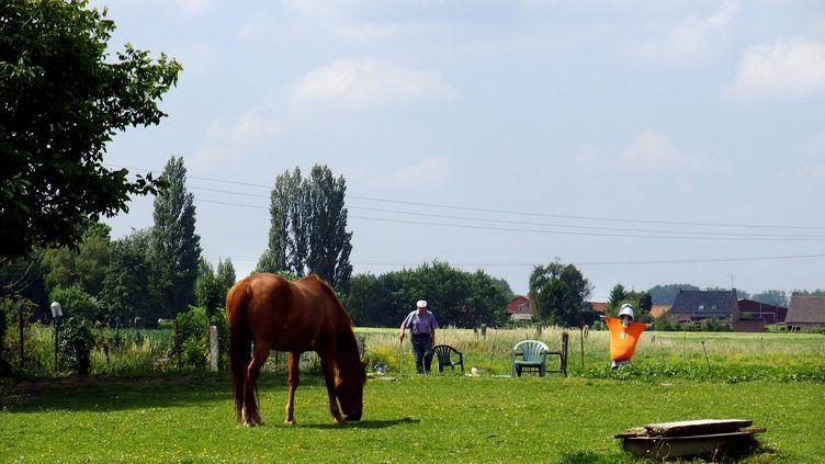 Huit Français ruraux sur dix se disent heureux de vivre en milieu rural, selon un sondage (Illustration) (SEBASTIEN JARRY / MAXPPP)