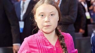 Greta Thunberg lors d'uneréunion sur leclimatàVienne (Autriche), le 28 mai 2019. (GEORGES SCHNEIDER / APA-PICTUREDESK / AFP)