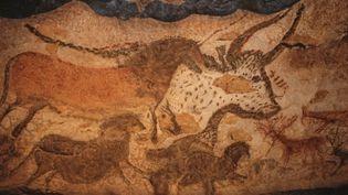 Peinture rupestre représentant des animaux sauvages sur une des parois de la grotte de Lascaux, en Dordogne. (JEAN-DANIEL SUDRES / AFP)