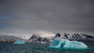 Dans le fjord Kongsfjord, en Norvège, le 5 juin 2010. (MARTIN BUREAU / AFP)