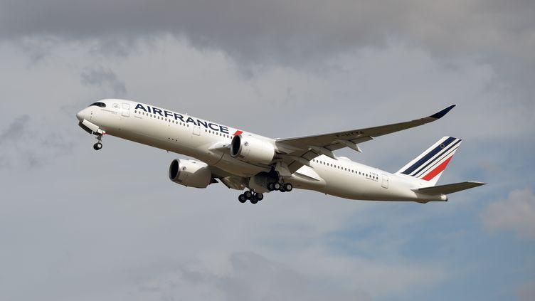 Un A350 d'Air France, le 27 septembre 2019 à Colomiers (Haute-Garonne). (PASCAL PAVANI / AFP)