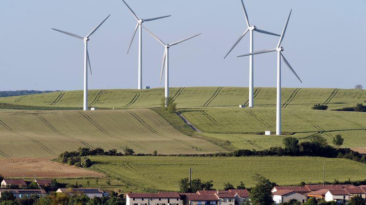 Le parc éolien situé près d'Avignonet-Lauragais (Haute-Garonne), le 26 mai 2013. (REMY GABALDA / AFP)