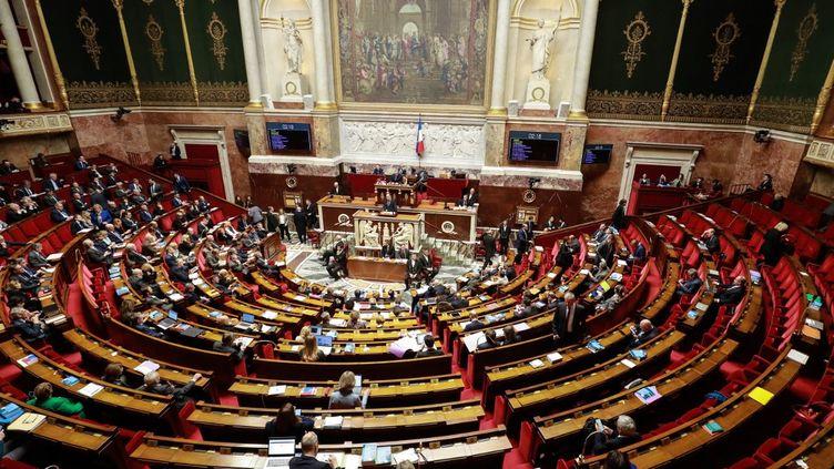 L'hémicycle du Palais-Bourbon, le 3 mars 2020, à Paris. (LUDOVIC MARIN / AFP)