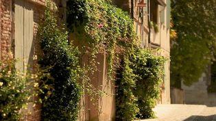 Tarn-et-Garonne : Auvillar, un joyau caché près de l'autoroute (France 2)