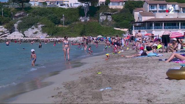 Canicule : se rafraîchir à la plage avant les grosses chaleurs