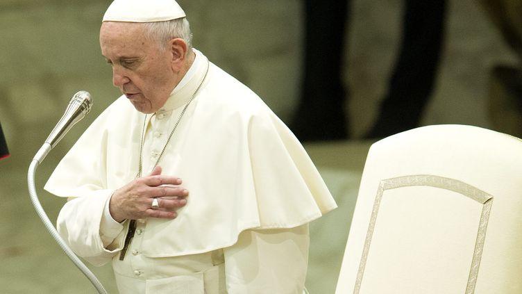 L'Irlande a demandéjusticeau pape François sur les abus sexuels. (PIERPAOLO SCAVUZZO / MAXPPP)
