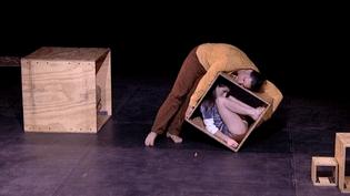 """""""Acrometria"""" par le cirque Psirc au festival Janvier dans les étoiles de la Seyne-sur-mer  (France 3 / Culturebox)"""
