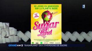L'affiche du film Sugarland (France 3)